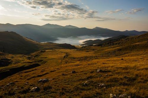 Fotos de stock gratuitas de amanecer, césped, colina, escénico
