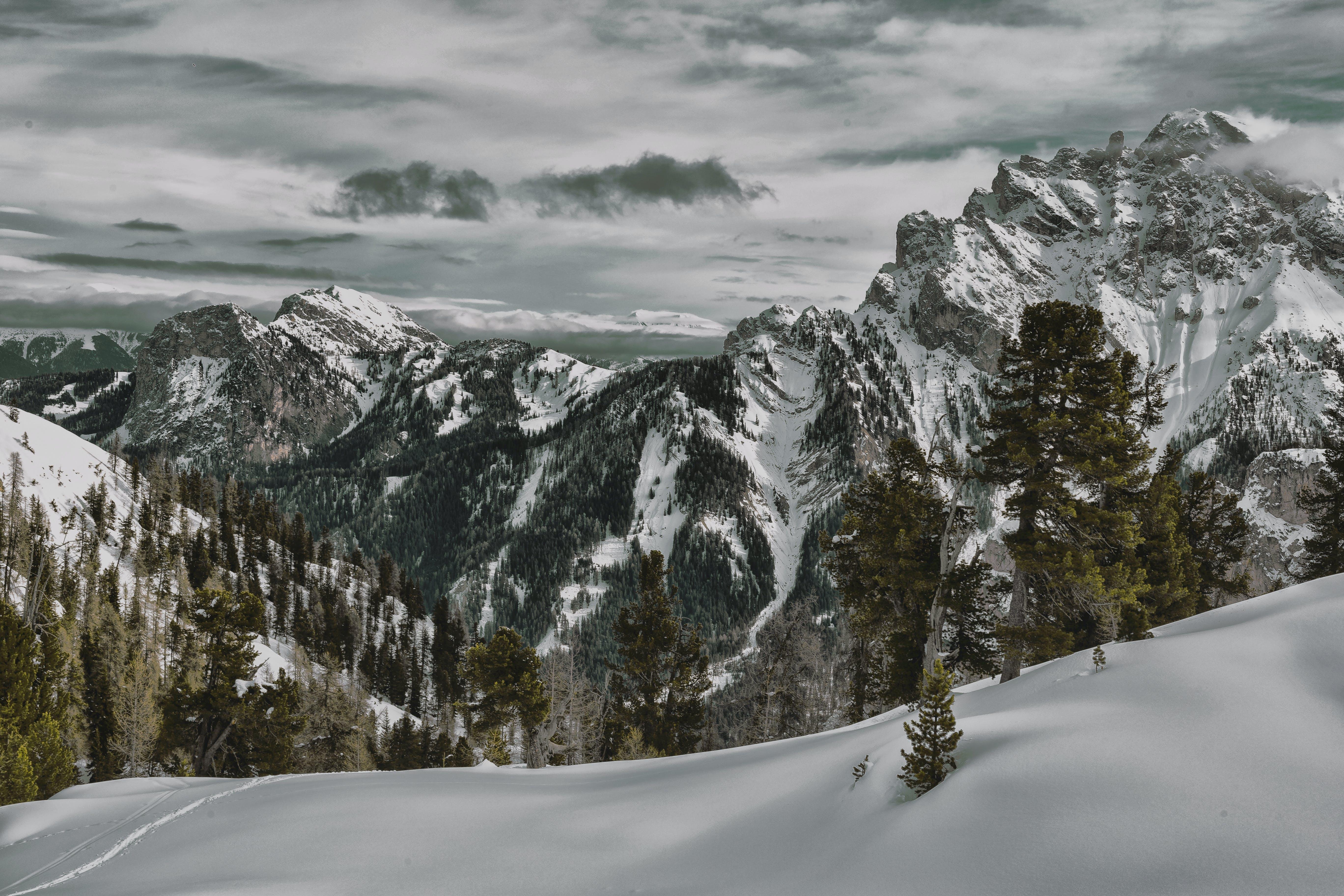 Immagine gratuita di alberi, avventura, cielo, collina