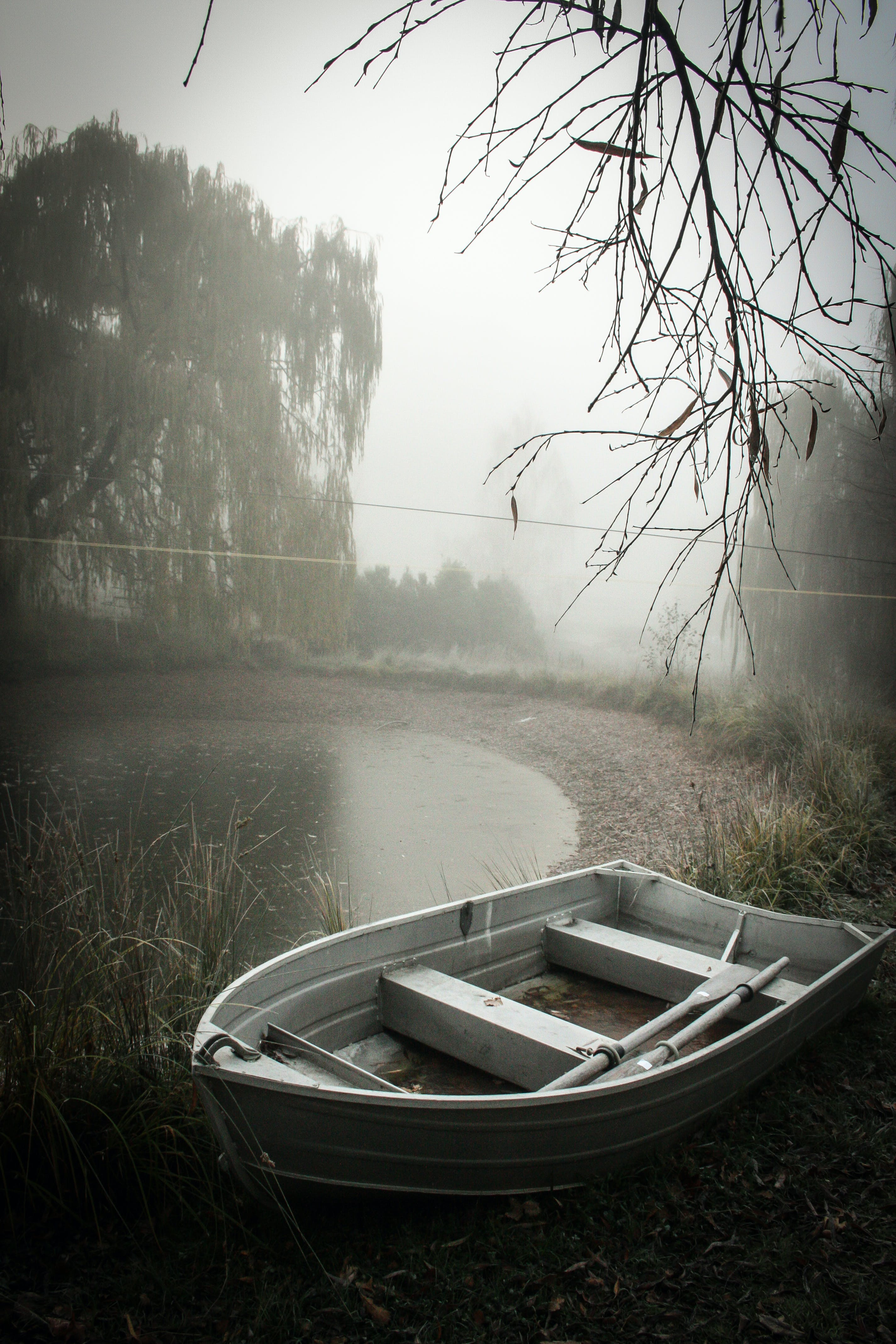 Free stock photo of boat, misty, new zealand, pond
