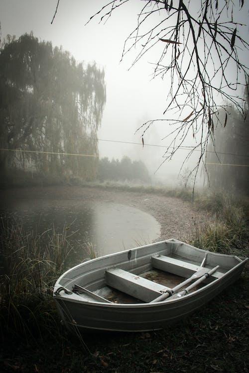 Ảnh lưu trữ miễn phí về ao, mùa đông, New Zealand, sương mù
