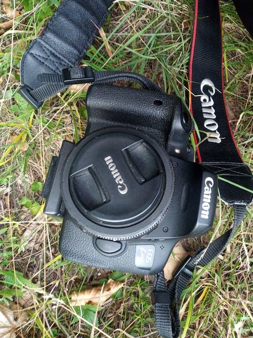 Imagine de stoc gratuită din aparat foto, Canon