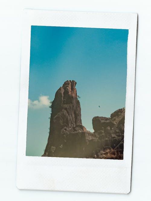 Photos gratuites de photographie polaroid