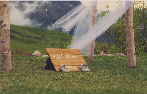 Δωρεάν στοκ φωτογραφιών με βέρες, γαμήλια τελετή, γήπεδο, γκαζόν