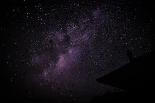 Foto stok gratis angkasa, astrofotografi, astrologi