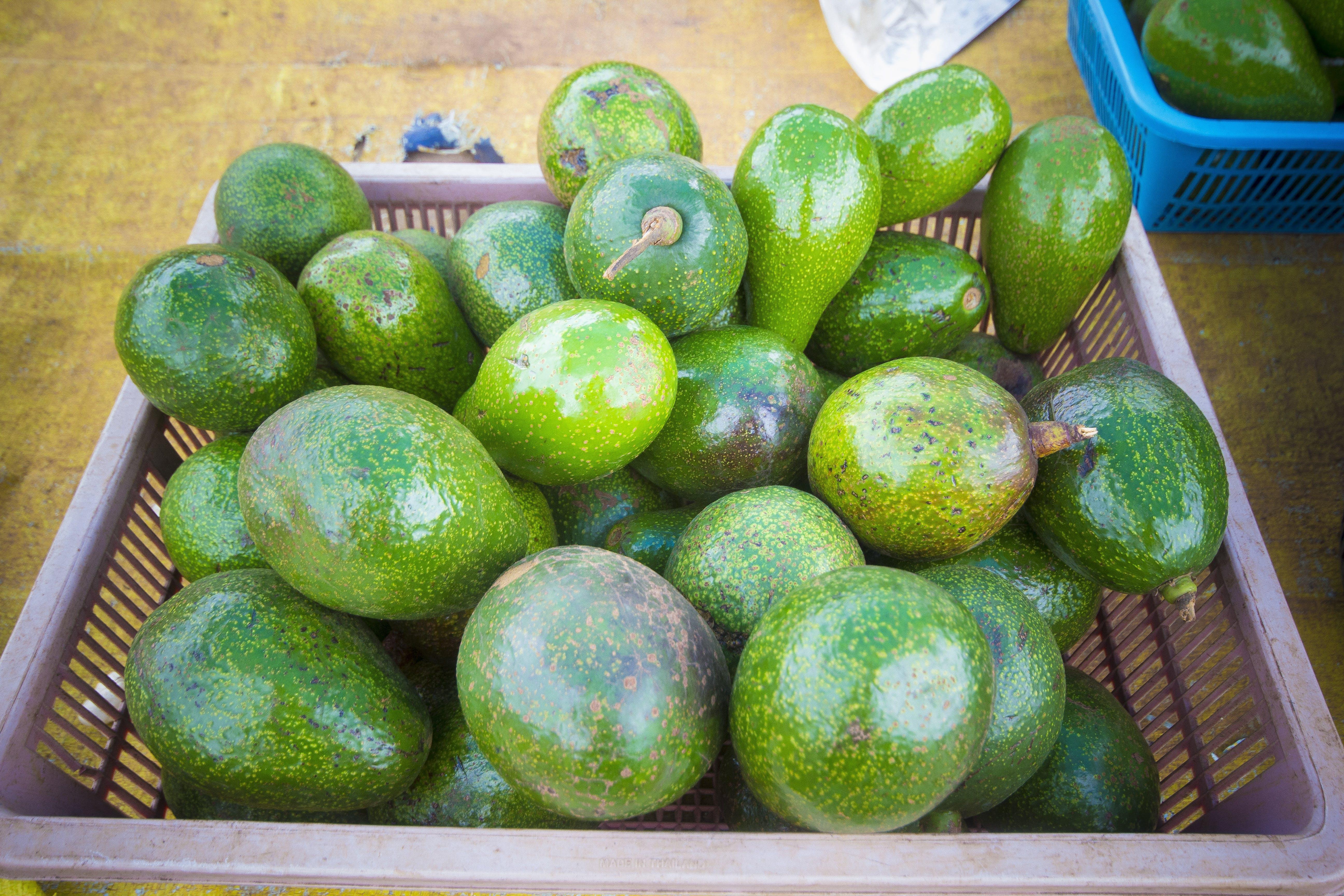 Rectangular Purple Plastic Basket Full of Green Avocado Fruits