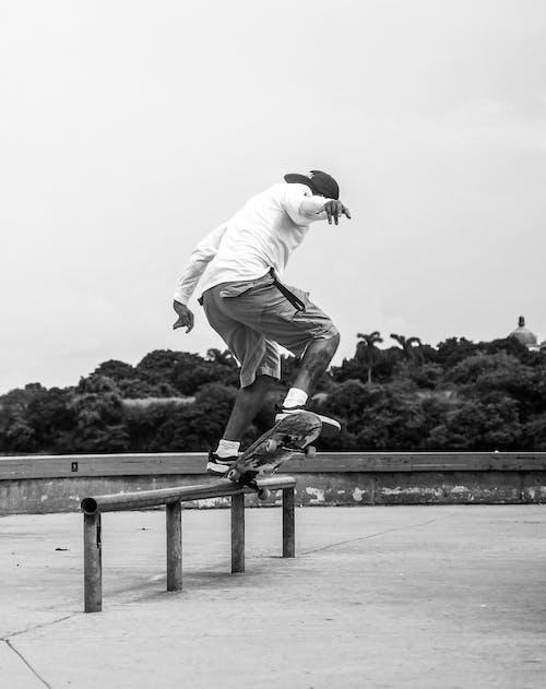 Foto profissional grátis de ação, adulto, atividade