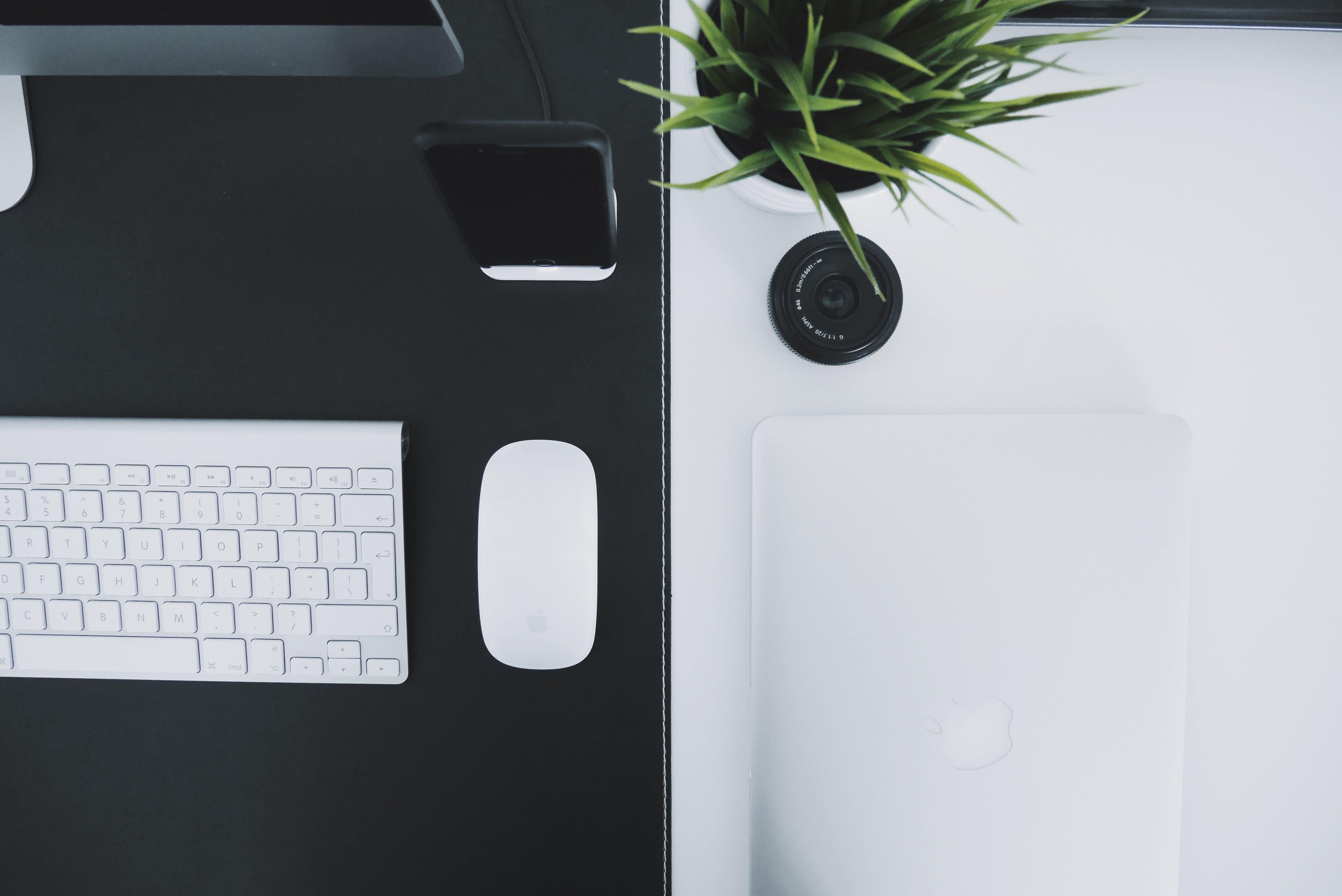apple keyboard, apple mouse, black