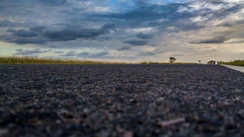 Fotos de stock gratuitas de Argentina, campo, carretera