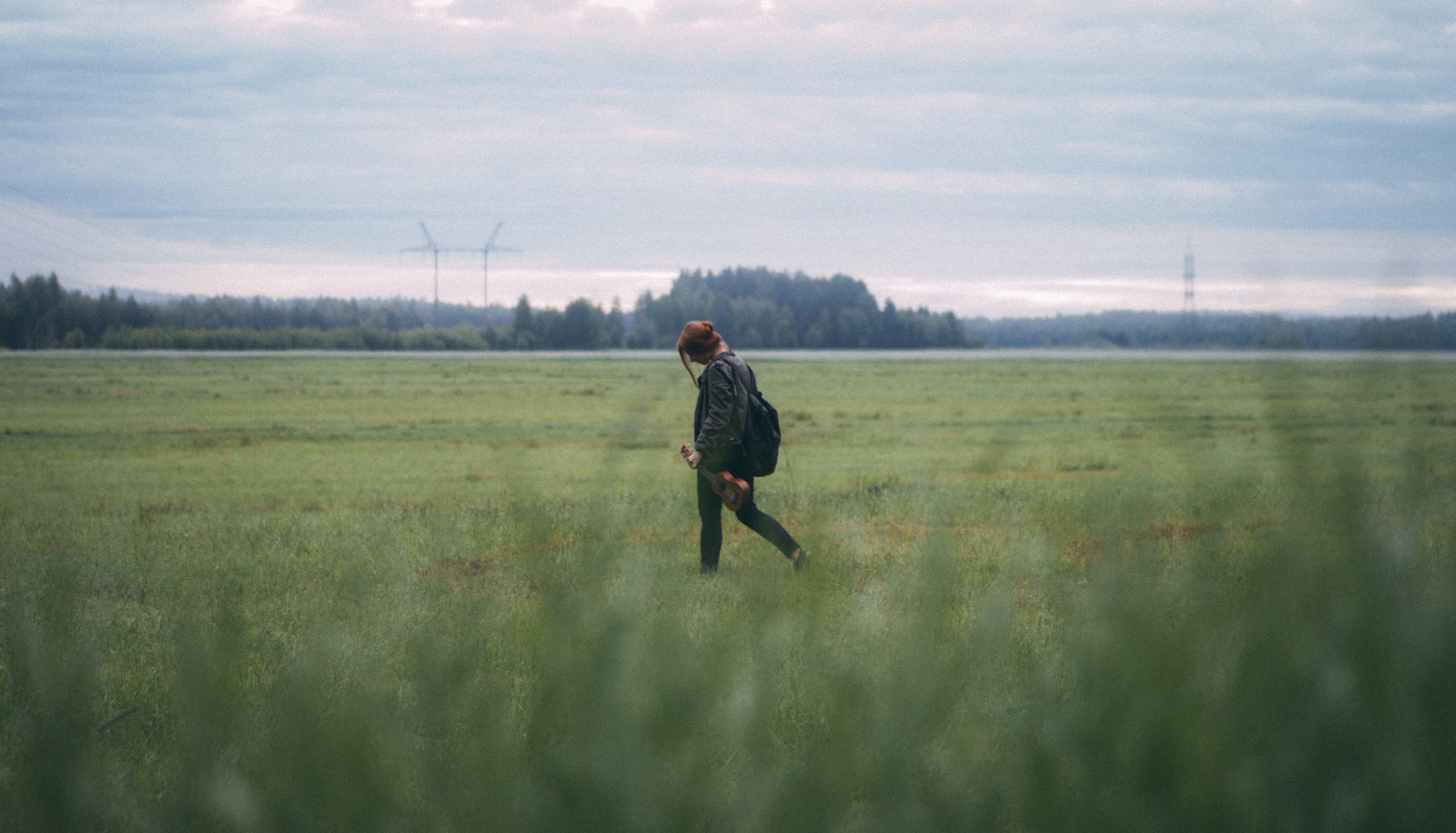 Free stock photo of field, ukulele