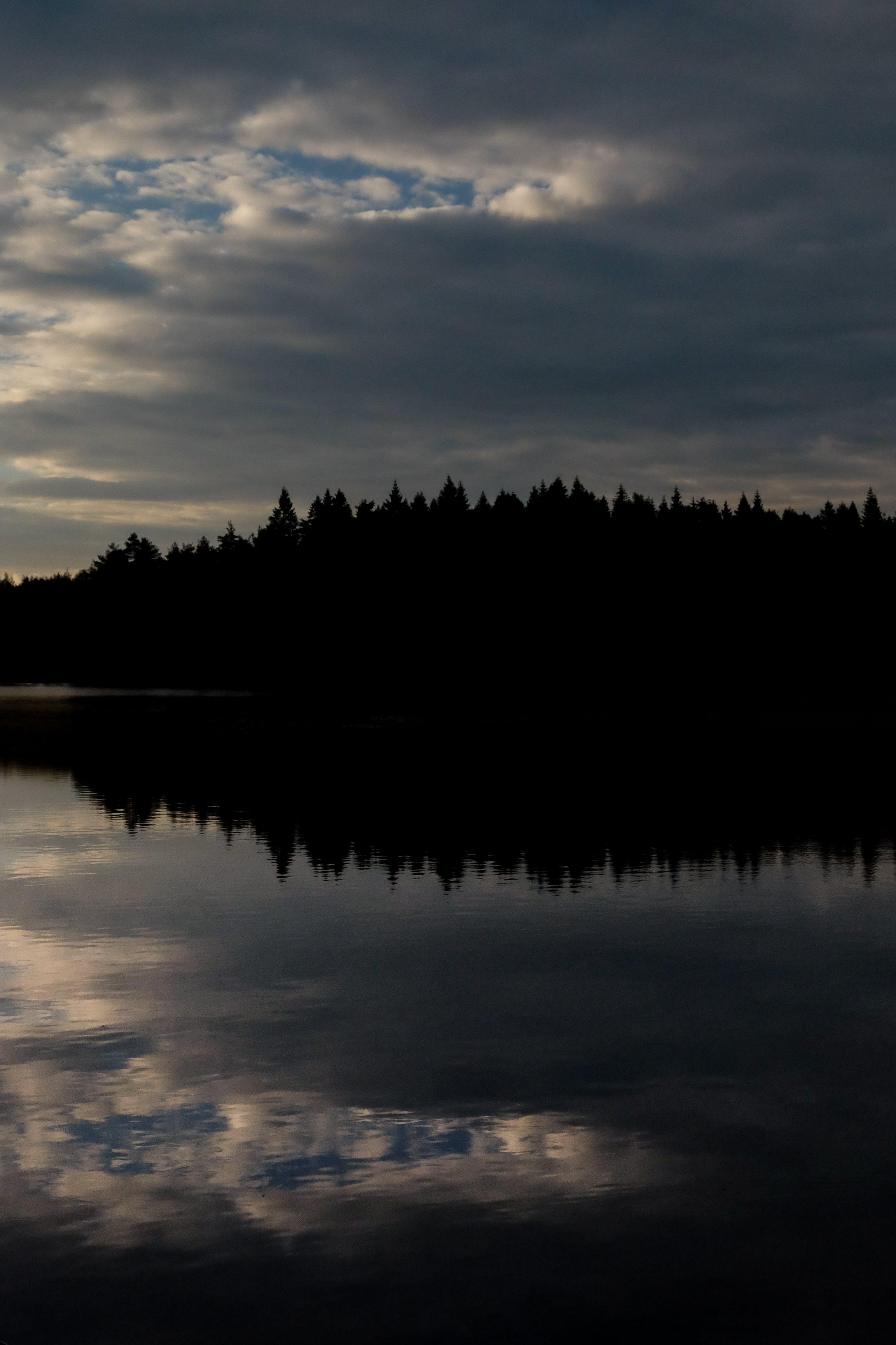 Δωρεάν στοκ φωτογραφιών με αντανακλάσεις, δασικός, δέντρα, δραματικός ουρανό