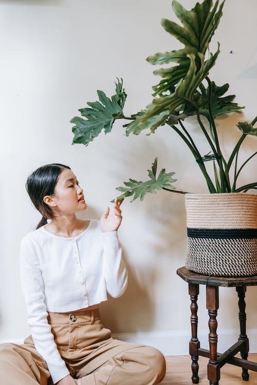 Girl in White Dress Shirt Holding Green Plant