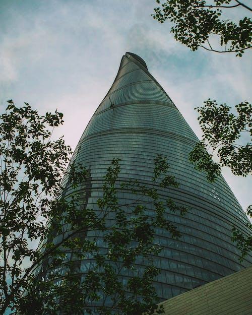 Безкоштовне стокове фото на тему «архітектура, архітектурне проектування, вежа, дерева»