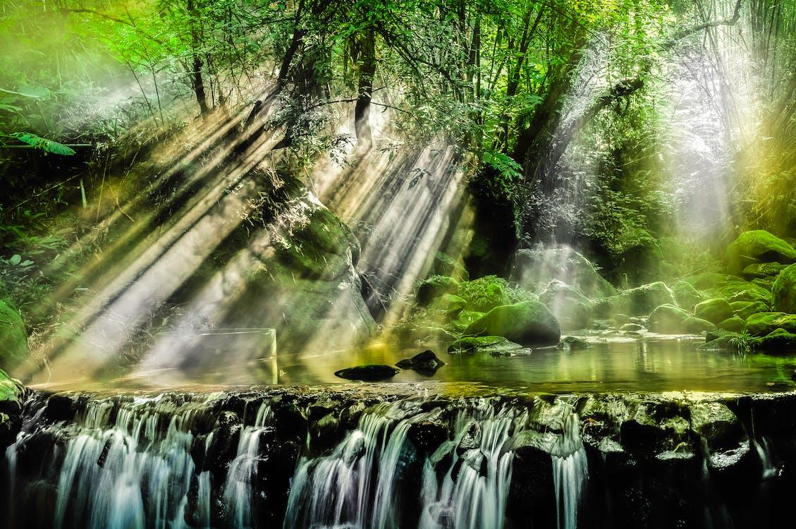 bäck, landskap, miljö