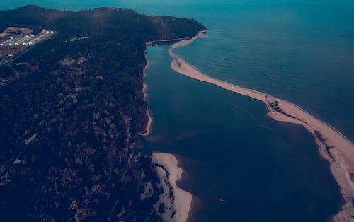 Gratis stockfoto met baai, berg, bomen, dageraad