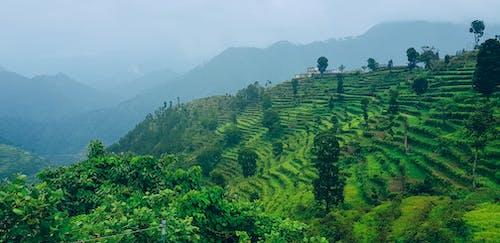 Free stock photo of creative photography, hills, hillside