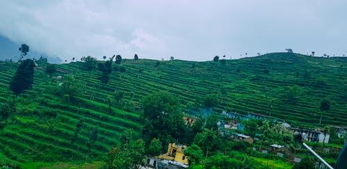 Free stock photo of hills, hillside, nature landscape