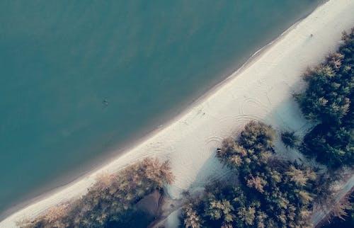 シースケープ, ハイアングルショット, ビーチ, 休暇の無料の写真素材