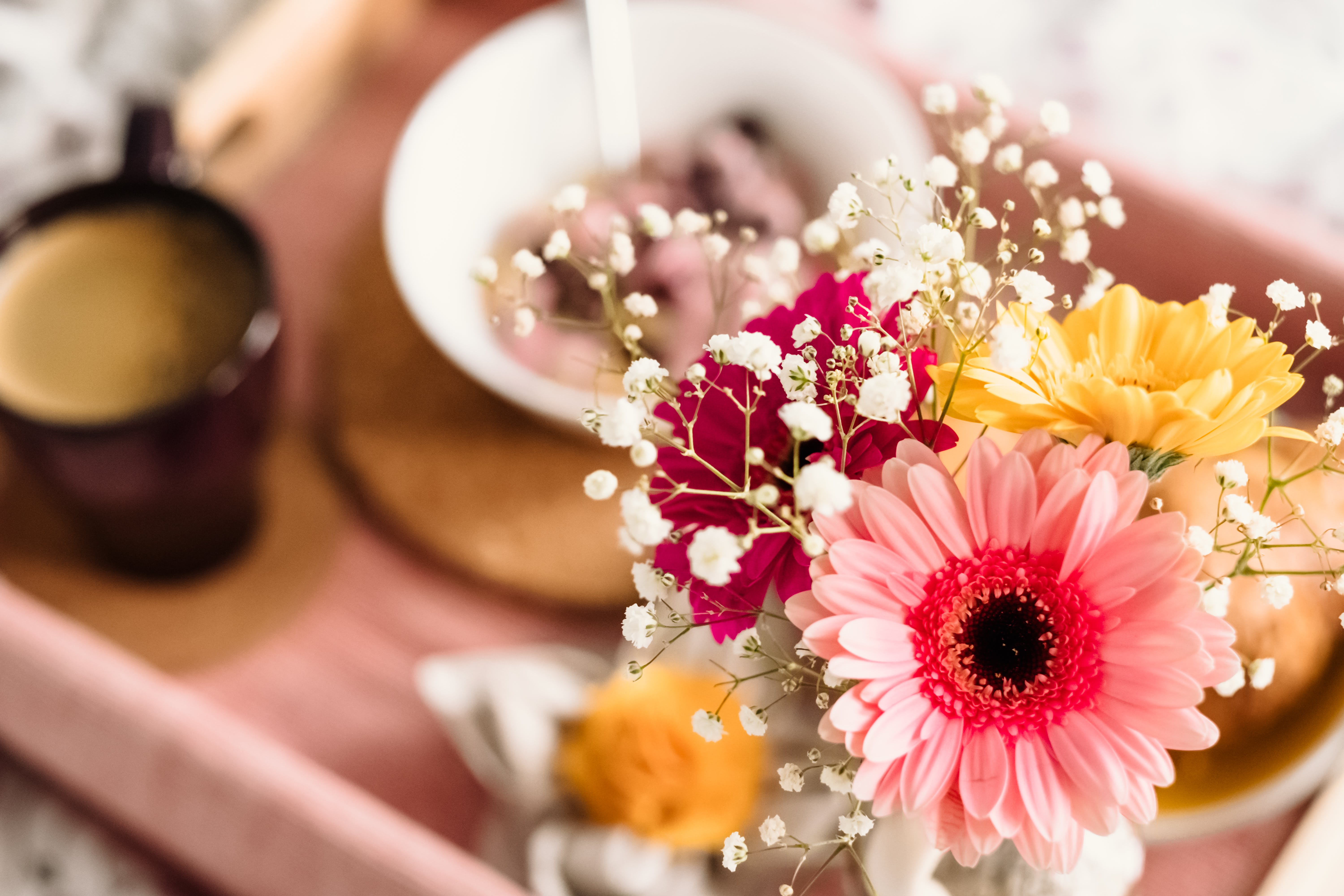 Shallow Focus Photography of Coffee and Dish With Pink Gerbera Daisy