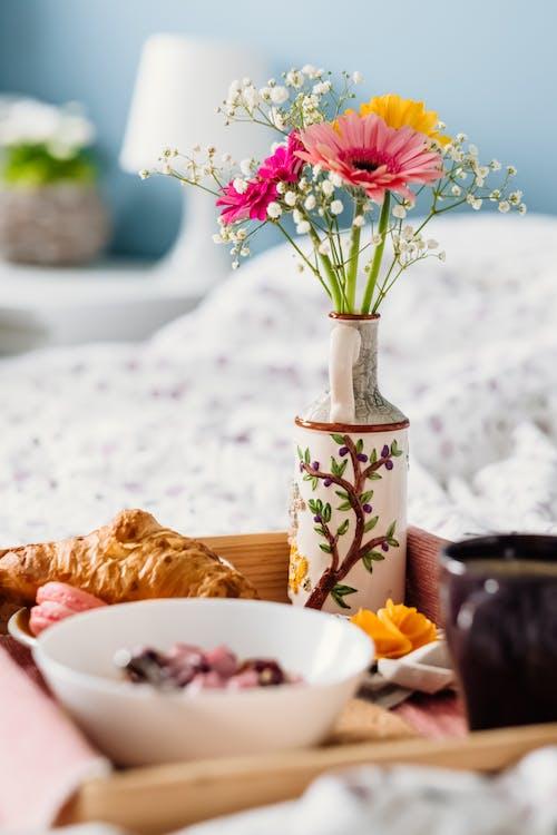 一杯咖啡, 明亮, 植物群, 特寫 的 免費圖庫相片