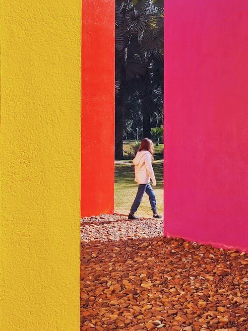 Kostnadsfri bild av dörr, färg, konst