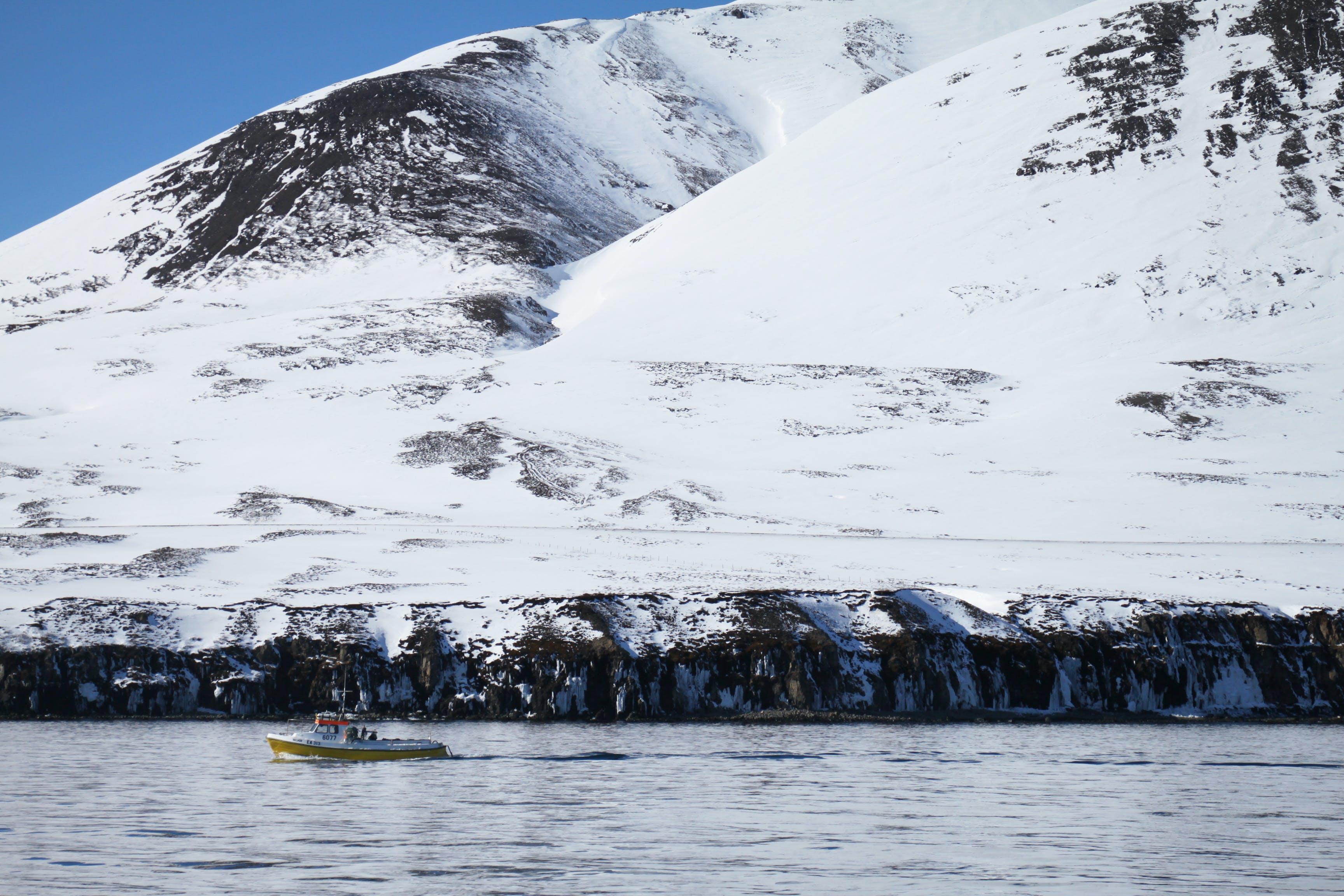 Foto profissional grátis de água, barco, cênico, céu