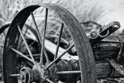 Základová fotografie zdarma na téma černobílá, denní, dřevo, kolo