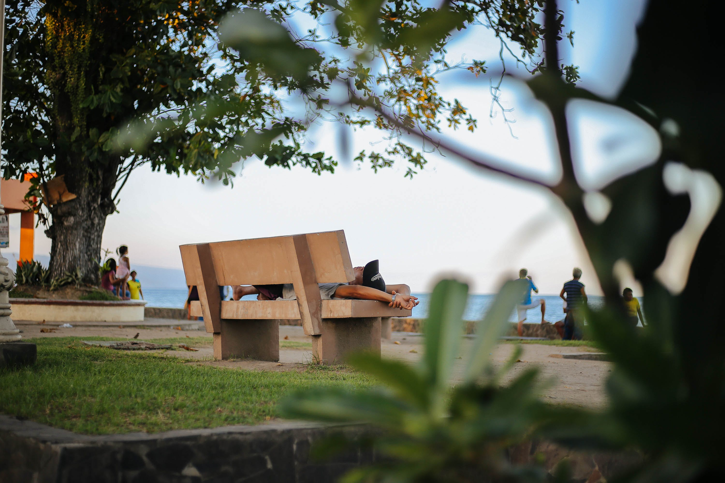 Photo of Brown Wooden Bench