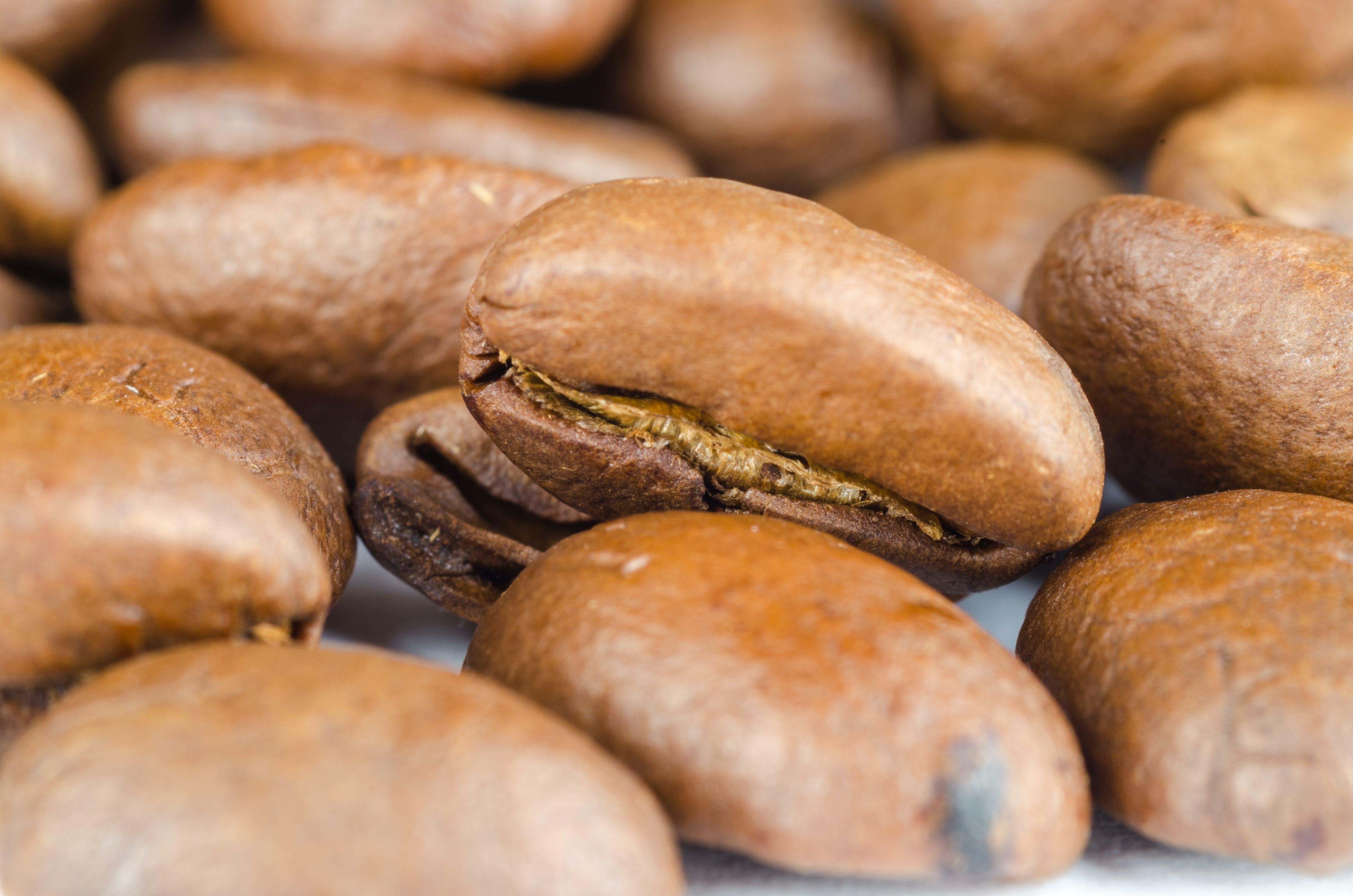 Free stock photo of food, caffeine, coffee, espresso