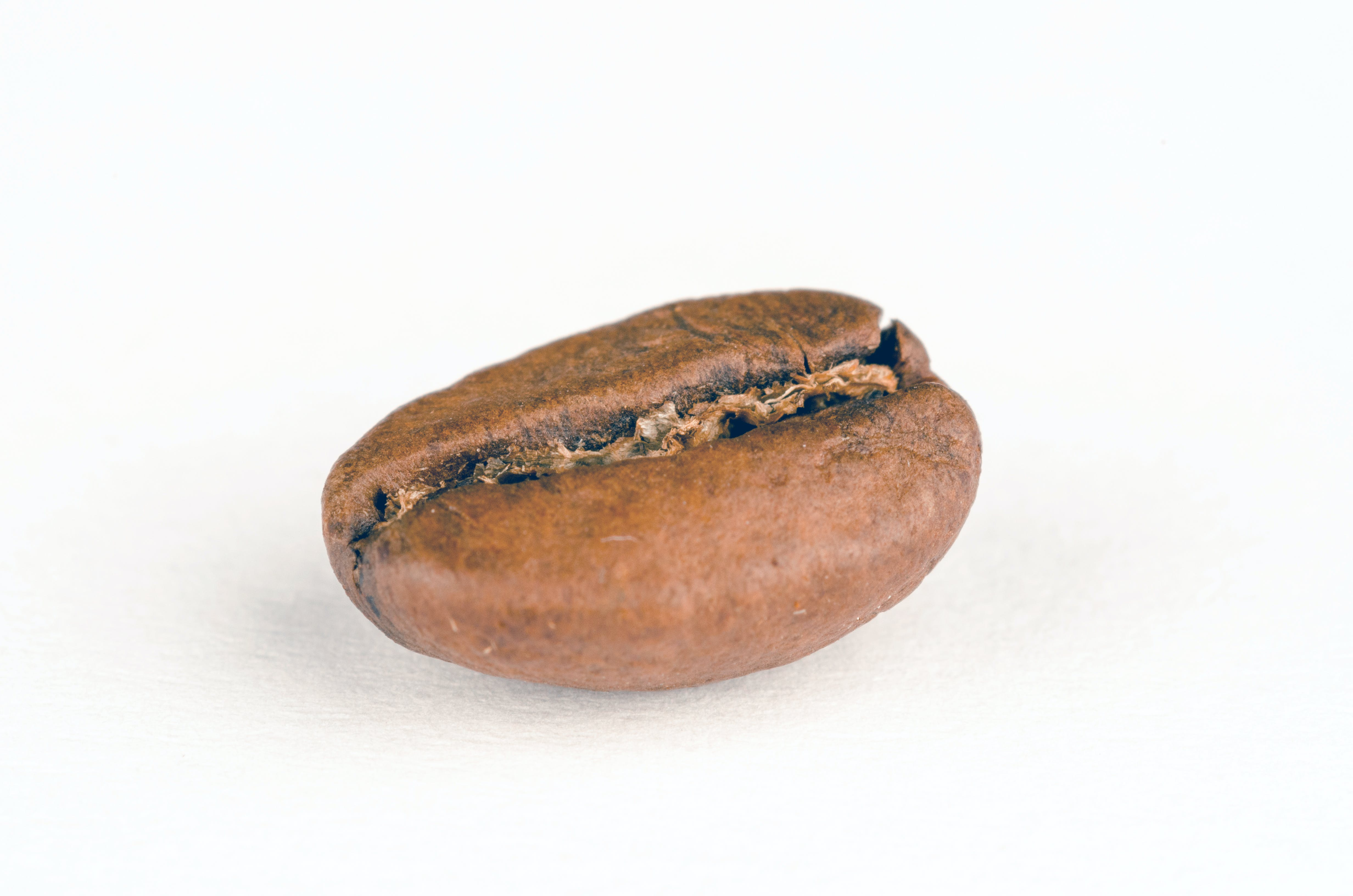 Oval Brown Stone