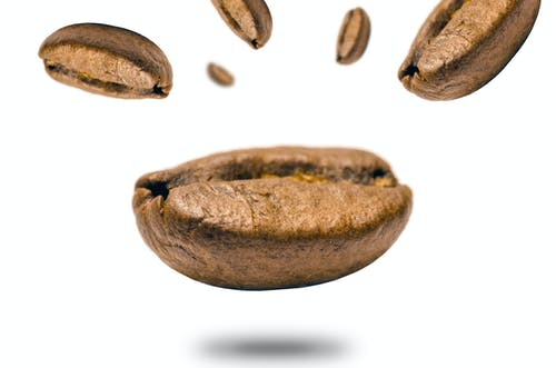 Closeup Photo of Coffee Bean