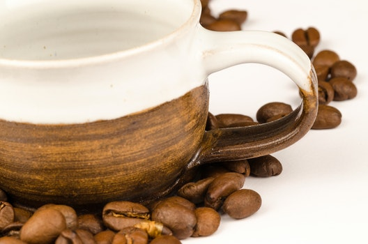 Brown Nuts and Brown Ceramic Tea Cup