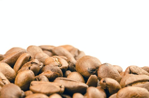 Selective Focus Photography of Coffee Beans