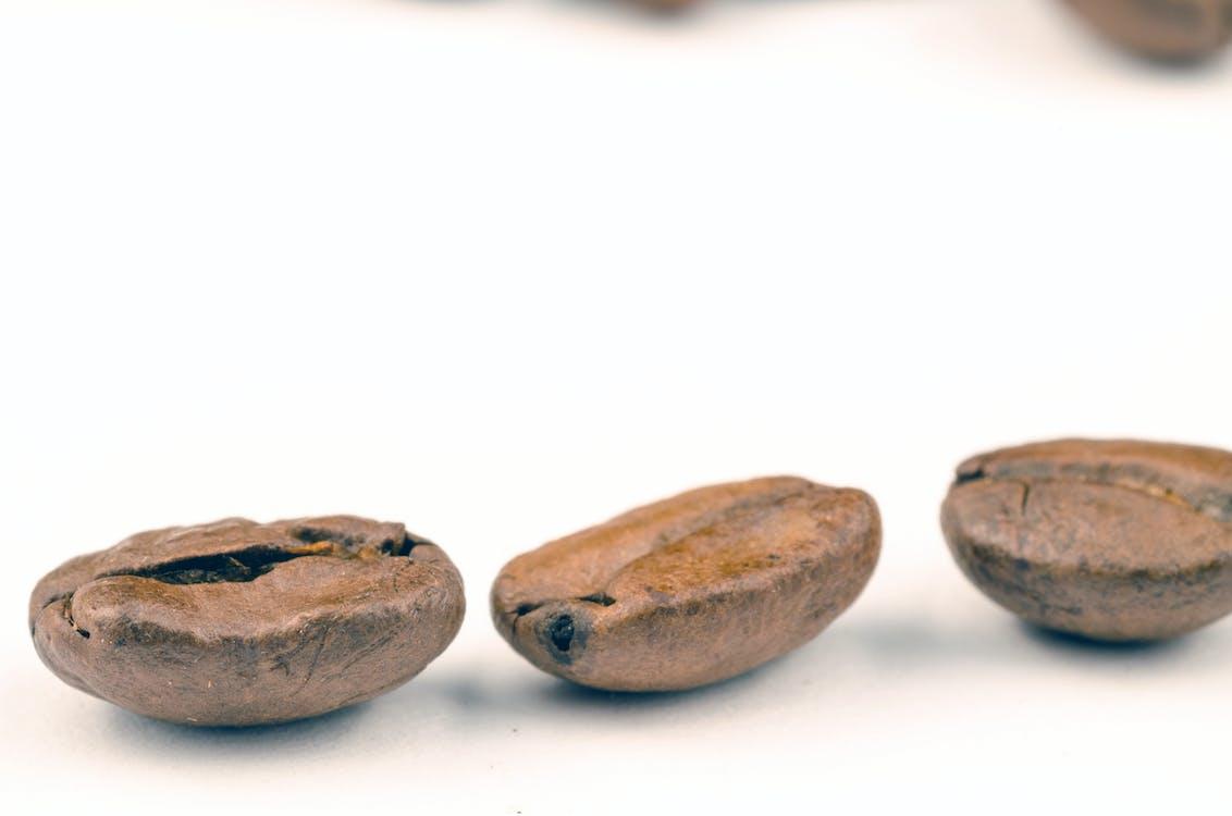 aromatický, bílá, fazole