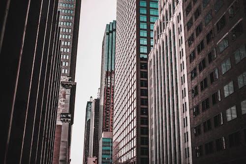 ガラスアイテム, ガラス窓, シティ, スカイラインの無料の写真素材