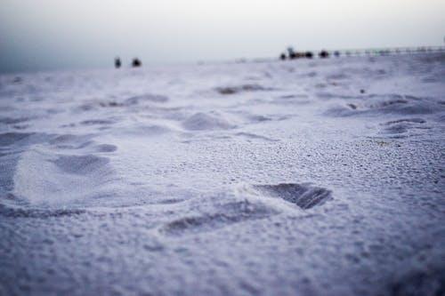 Photos gratuites de empreinte de pas, sable