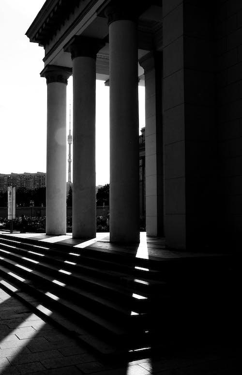 Foto profissional grátis de colunas, concreto, degraus