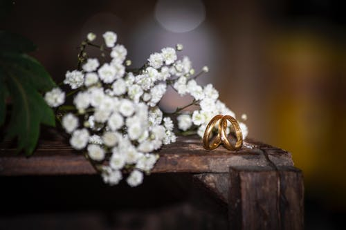 Foto stok gratis cincin, cincin emas, cincin kawin