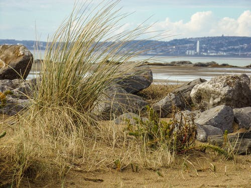 Foto d'estoc gratuïta de aberavon, mar, paisatge, platja