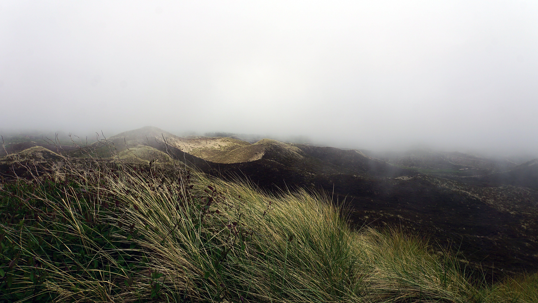 Free stock photo of dune, dunes, fog, germany