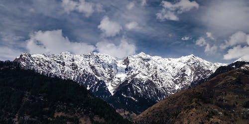 コールド, ハイキング, 冒険, 冬の無料の写真素材
