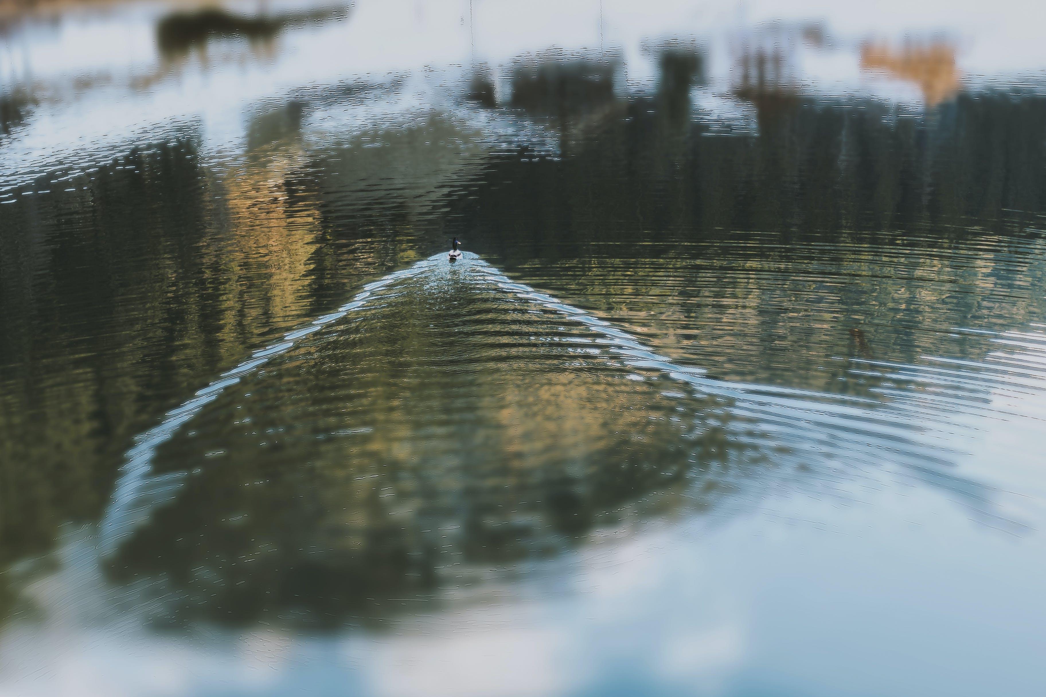 Δωρεάν στοκ φωτογραφιών με αντανάκλαση, απόγευμα, αυγή, γνέφω