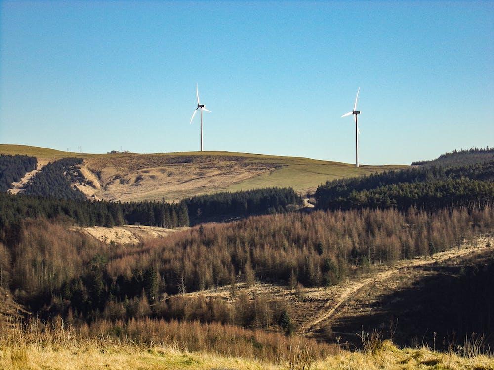 альтернативна енергетика, відновлювана енергія, вітер