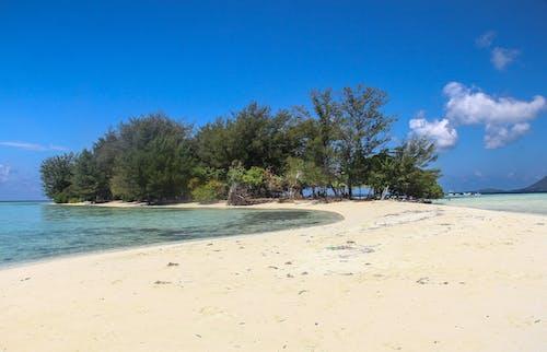 Foto stok gratis jawa, karimun, laut, pantai