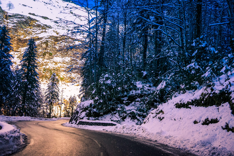 Kostenloses Stock Foto zu bäume, berg, einfrieren, eis