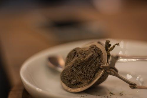 Free stock photo of green tea, tea