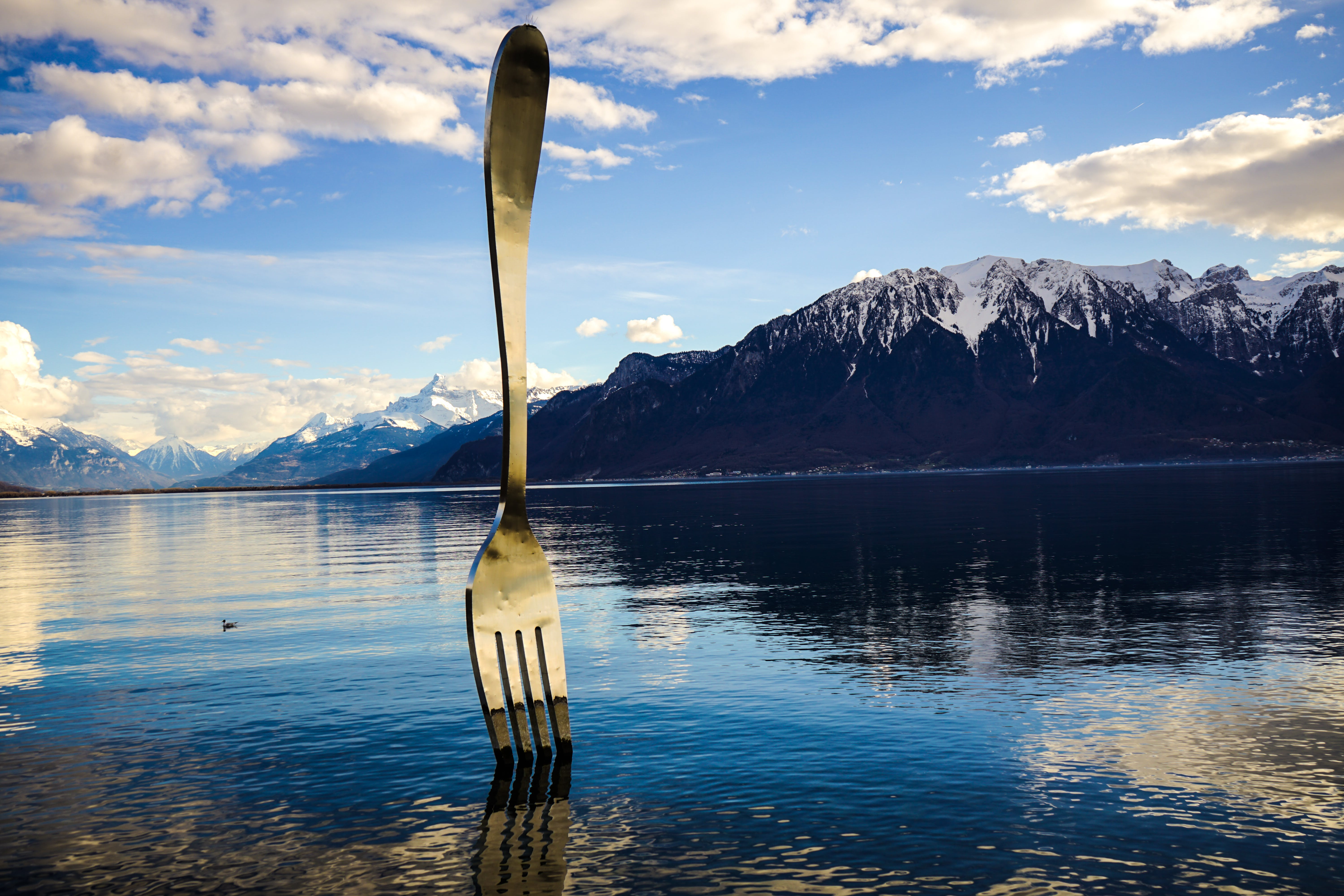 Gray Stainless Steel Fork on Water With Overlooking Mountain at Daytime