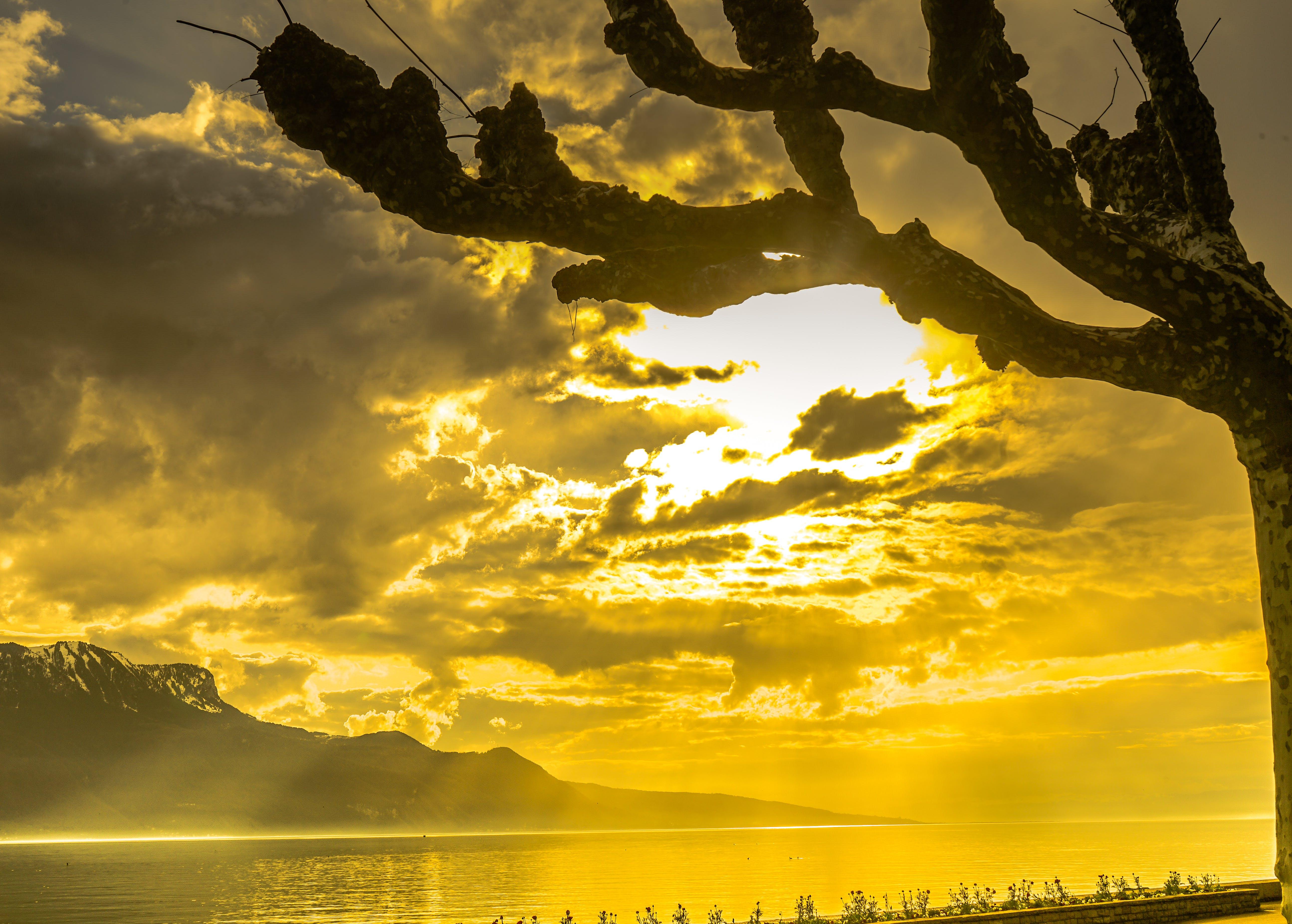 Free stock photo of sky, sunset, love, art
