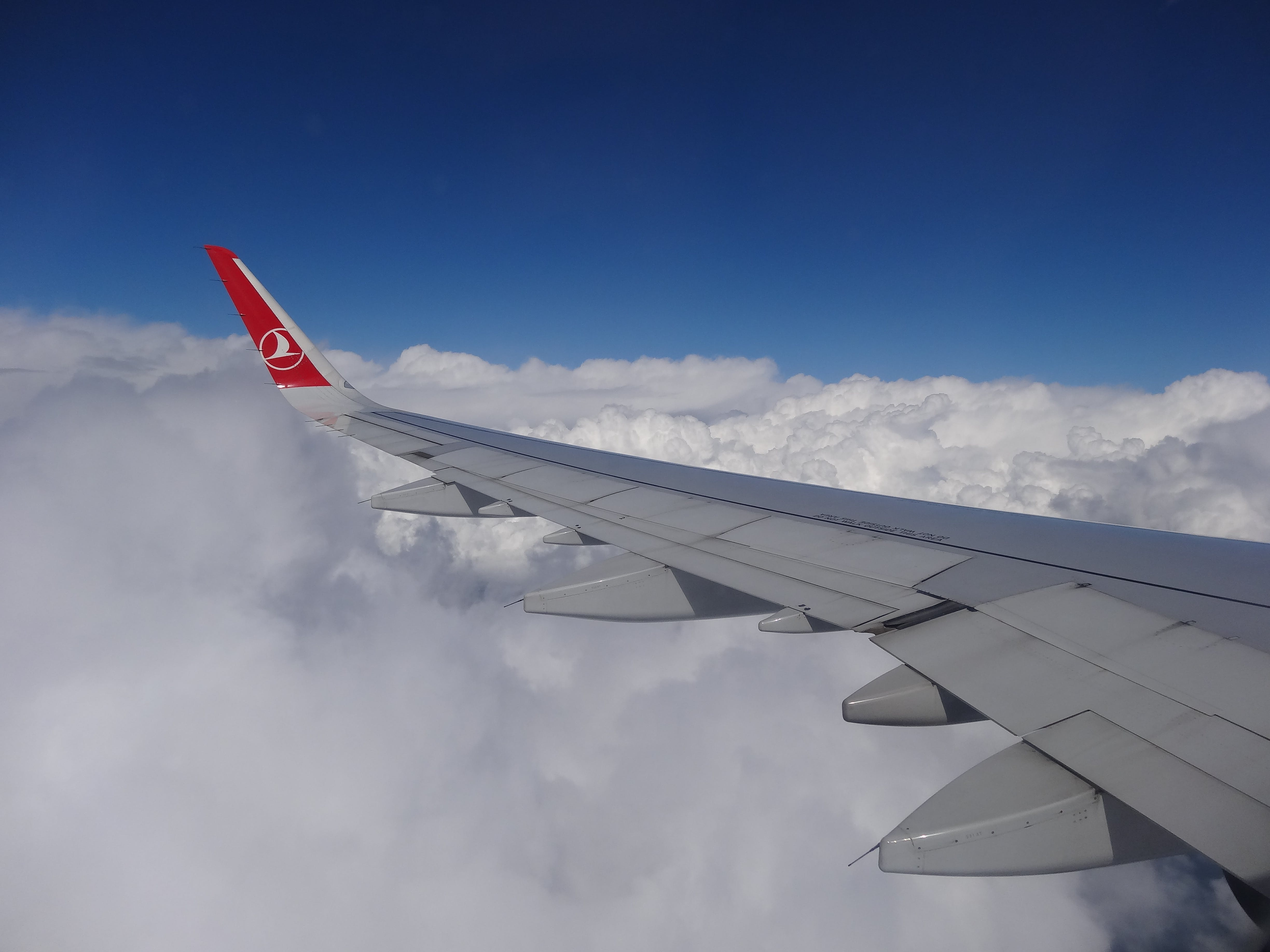 Free stock photo of #notsponsored, airlines, airplane, cloud