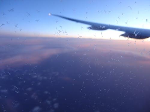 Fotos de stock gratuitas de avión, nube, nubes, puesta de sol