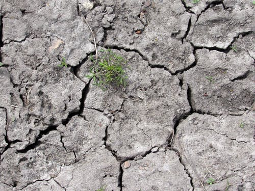 Безкоштовне стокове фото на тему «сірий, суха земля»